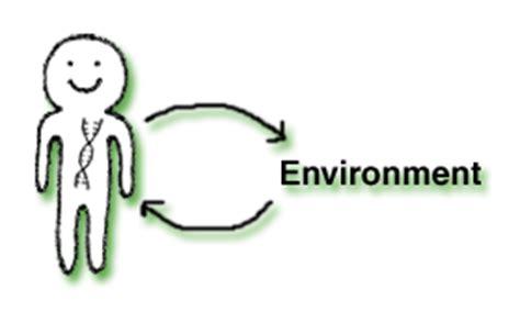 Short Essay on Environment - 2 Essays